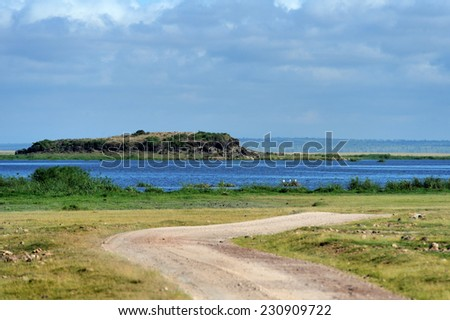 Savannah in National Park of Africa, Kenya - stock photo
