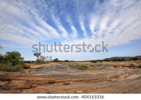 Savannah landscape in the National park of Kenya, Africa - stock photo