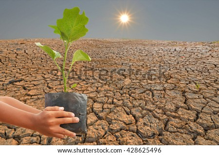 Save the earth by plant growing