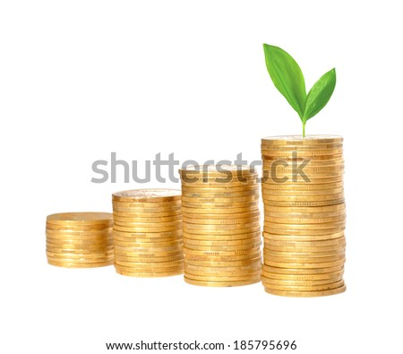 Savings, increasing columns of gold coins and green plant  isolated on white background - stock photo
