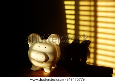 Savings of money in Piggy Bank