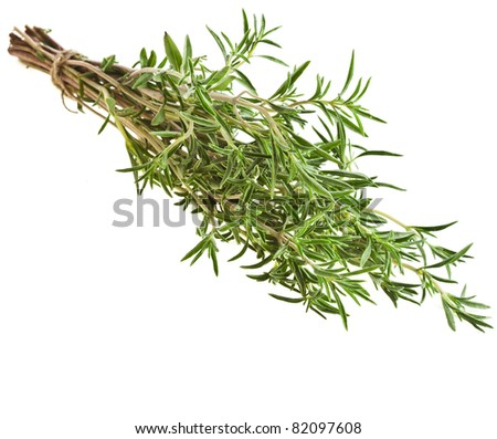 savory herb isolated on white background - stock photo