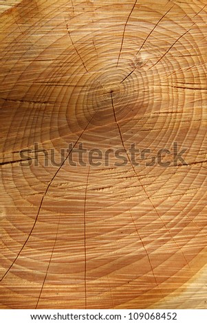 Sawn cracked timber showing annual rings - stock photo