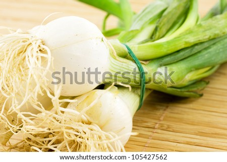 scallion, leek