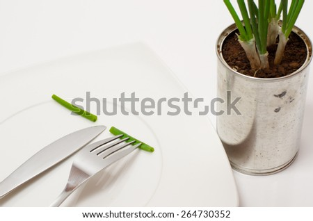 Scallions sliced on white plate with knife and fork beside an organic kitchen garden - stock photo