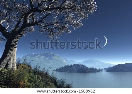 scandinavian moonlight - stock photo