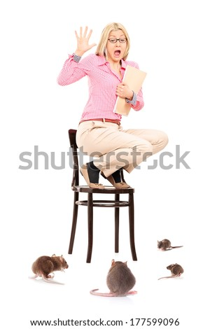 Scared woman standing on chair during a rat invasion, isolated on white background - stock photo