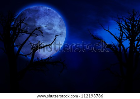 Scary, creepy forest at night and big full moon - stock photo