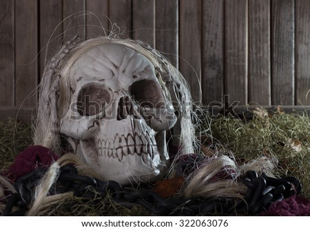 Scary grim reaper skull on a wood background - stock photo