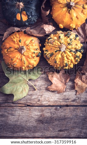 Scary pumpkins on wooden background with blank space,halloween concept - stock photo
