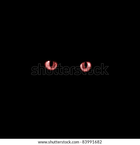 Scary Red Eyes in the Dark - stock photo