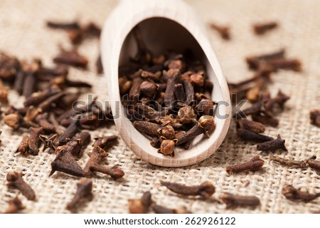 Scattered cloves aromatic spicein wooden shovel on vintage textile background - stock photo