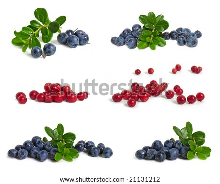 Scattering of bilberries and cranberries on white background