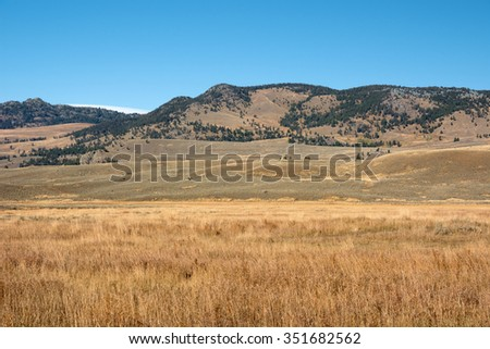 Scenery at Lamar Valley in Yellowstone National Park, Wyoming.  - stock photo