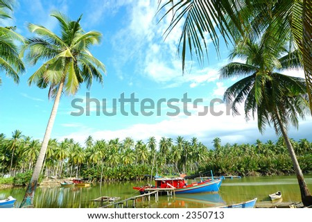 Scenery of a fishing village with many palm trees - stock photo