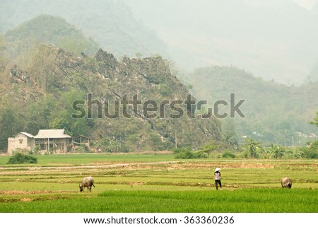 Scenery of Mai Chau in Vietnam - stock photo