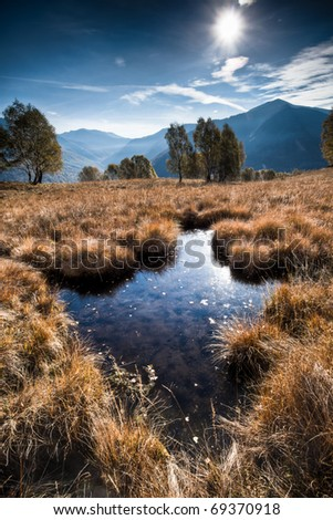 scenery of morning sun reflecting in a pond - stock photo