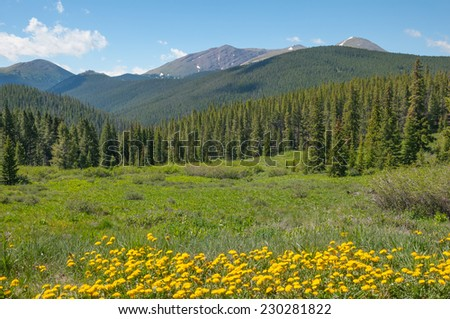 Scenes of the Colorado Rockies along the Boreas Pass road. - stock photo