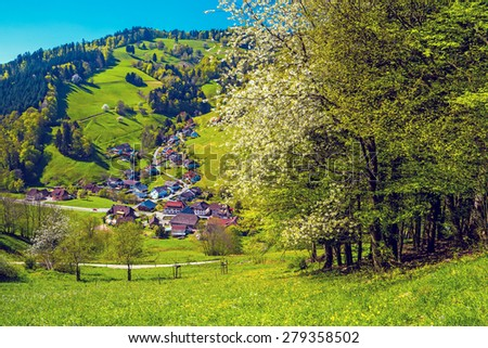 Scenic aerial view of a picturesque small town in Germany, Muenstertal, Schwarzwald. Summer landscape with blossoming trees - stock photo