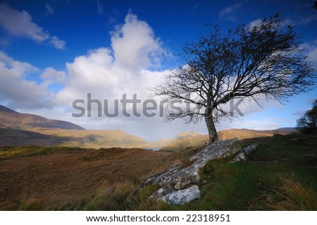 Scenic autumn landscape - stock photo