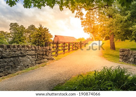 Scenic countryside alley in summer - stock photo