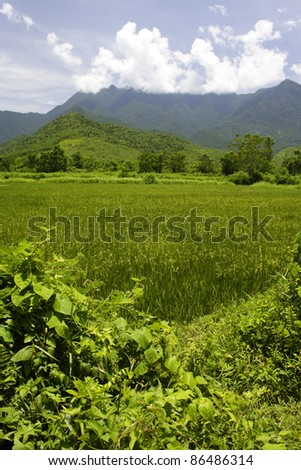 Scenic countryside between Danang and Hue on the central coast of Vietnam South East Asia