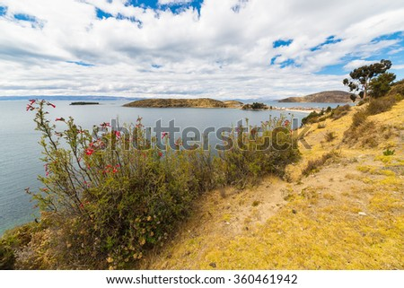 Scenic dramatic sky in winter season at Challapampa Bay on Island of the Sun, Titicaca Lake, among the most scenic travel destination in Bolivia. Flowers in the foreground. - stock photo