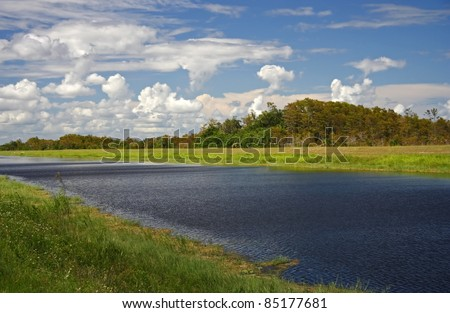 Scenic L-28 Canal in in Big Cypress National Preserve, Florida Everglades - stock photo