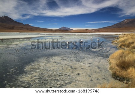 Scenic lagoon in Bolivia, South America Laguna Hedionda, Bolivia  - stock photo