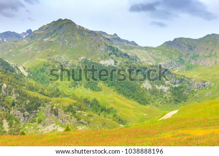 Scenic landscape beautiful meadow field at Passo San Marco or San Marco Pass in summer, Lombardia, Italy.