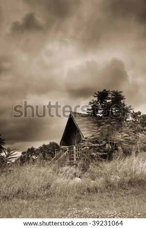 Scenic Landscape In Sepia - stock photo