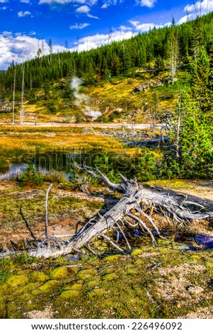 Scenic Landscapes of Geothermal activity of Yellowstone National Park USA, Mammoth Paintpots - stock photo