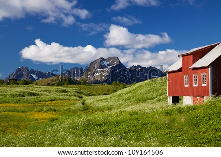 Scenic Lofoten islands in Norway during short summer north of arctic circle with typical red wooden building, dramatic mountain peaks and flowering fields - stock photo
