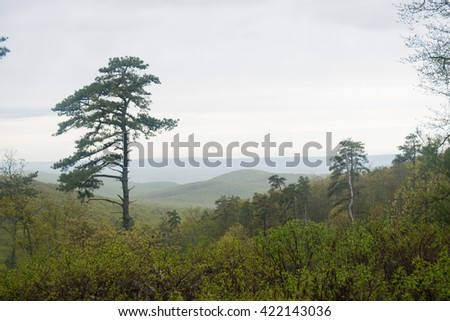 Scenic mountain landscape in Michaux State forrest - stock photo
