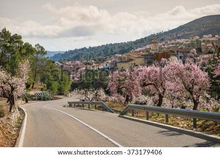 Scenic mountain road running along blossoming almond plantations, Costa Blanca, Spain - stock photo