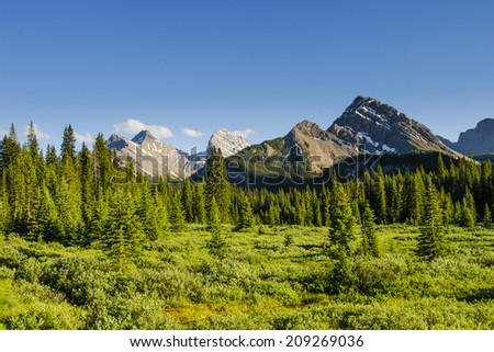 Scenic mountain views in the Summertime, Kananaskis Country Alberta Canada