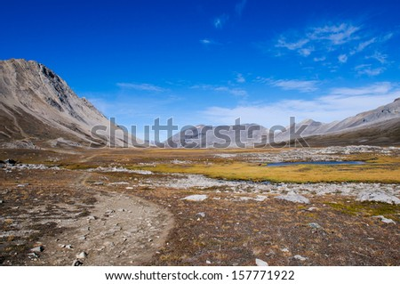 Scenic Mountain Views, Wilcox Pass, Jasper National Park, Alberta Canada