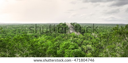 Scenic panoramic of Maya Temple 1 rising above dense green jungle in Calakmul, Campeche, Mexico under dark gray sky