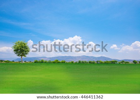 Scenic paradise with trees on top of a green hill, blue sky and white clouds and another hilly meadow in the background. - stock photo