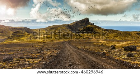 Scenic road and surreal landscape at the Highlands of the Snaefellsnes peninsula near the glacier Snaefellsjokull in Iceland. With wooly gray green moss above young lava fields and the sea in the back