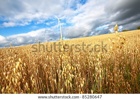 Scenic rural landscape with a windmill - stock photo
