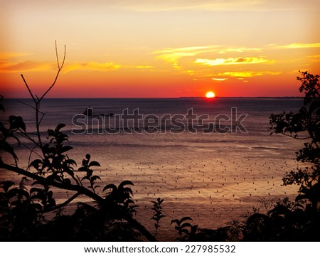 scenic sunset on sea with shellfish farming framed by tree branches  - stock photo