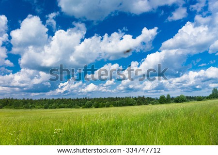 Scenic View Growth Season  - stock photo