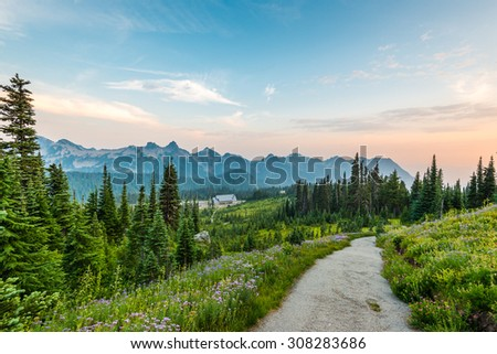 scenic view  in paradise trail area in Mount Rainier,WA,USA - stock photo