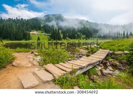 scenic view in Tipsoo lake in  Mount Rainier area,WA,USA - stock photo