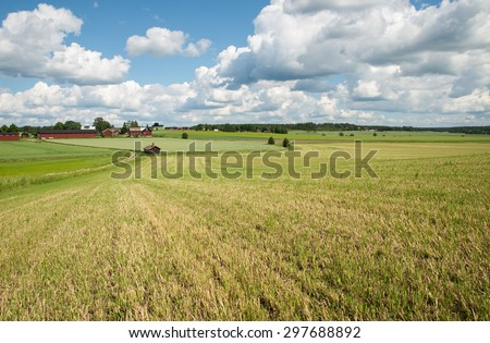 Scenic view of a agricultural landscape in Sweden - stock photo