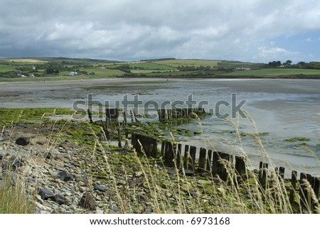 Scenic view of a beach in Southern Ireland