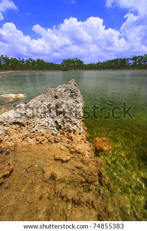 Scenic view of a lake in the Everglades National Park - USA. - stock photo