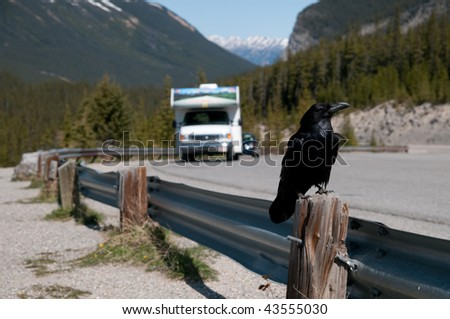 Scenic view of a raven with a camper - stock photo