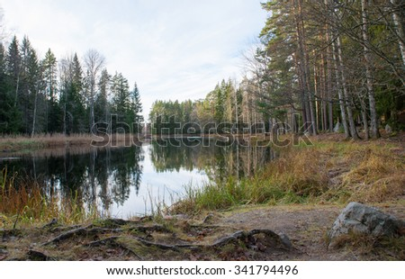 Scenic view of a river in autumn before the winter - stock photo